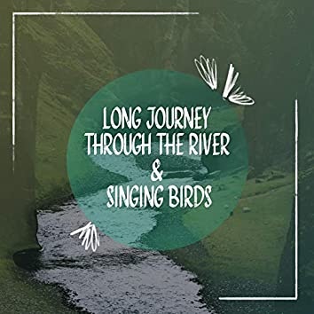 Long Journey Through the River & Singing Birds: Relaxing Nature Sounds, Music Therapy, Harmony of Senses