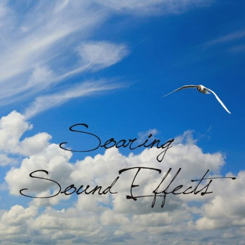 Impact Hit Club Bat Attack Sound Effects Sound Effect Sounds EFX Sfx FX Impacts Impacts Miscellaneous [Clean]