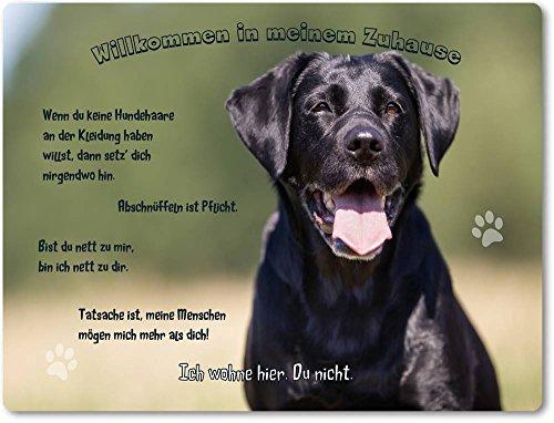 Merchandise for Fans Blechschild/Warnschild/Türschild - Aluminium - 20x30cm - - Willkommen in Meinem Zuhause - Motiv: Schwarzer Labrador Porträt - 13
