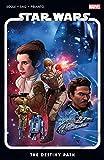 Star Wars Vol. 1: The Destiny Path (Star Wars (2020-)) (English Edition)