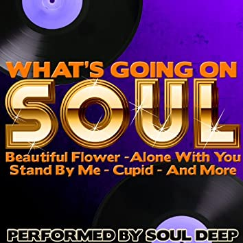 What's Going On: Soul