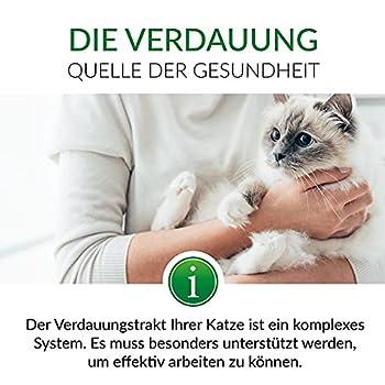 GimCat EXPERT LINE Pâte Gastro Intestinal – Snack fonctionnel pour chats, favorise la digestion et la flore intestinale – 1 tube (1 à 50 g)