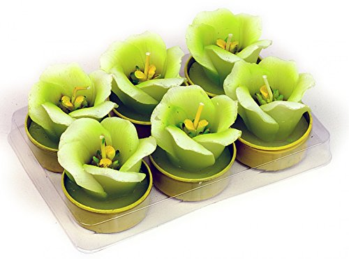 ITRR Velas Decorativas (6 Unidades, 38 mm), diseño de Flores, Color Verde