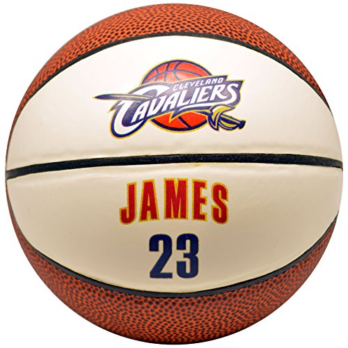Discover Bargain Spalding NBA Cleveland Cavaliers Lebron James Mini Jersey Basketball