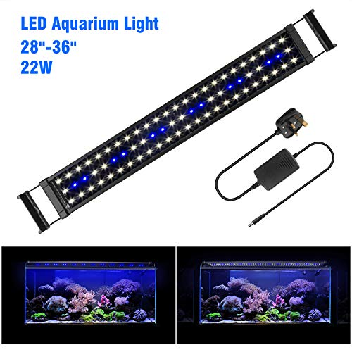 FTALGS LED Aquarium Lights,Fish Tank Light with Extendable Brackets, Blue and White LEDs For Fresh water and Salt Water (80A=28