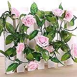 SLJHUA Fausse Fleur Artificielles en Soie Décoration Florales Artificielles De Mariage Bricolage Bouquet Hôtel Fleur 95 L 2Pcs Neuf Belles Fleurs 1 Branche Rines Bine (Couleurs Assorties) Rose Clair