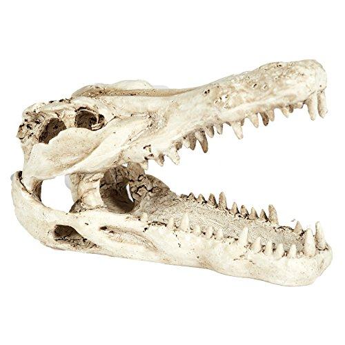 Pet Ting Aquarium-Dekoration Krokodilschädel, Dekoration für Vivarium