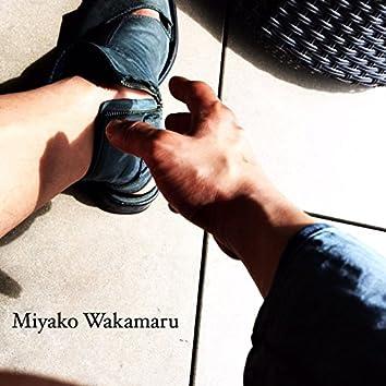 Miraieno Kakehashi