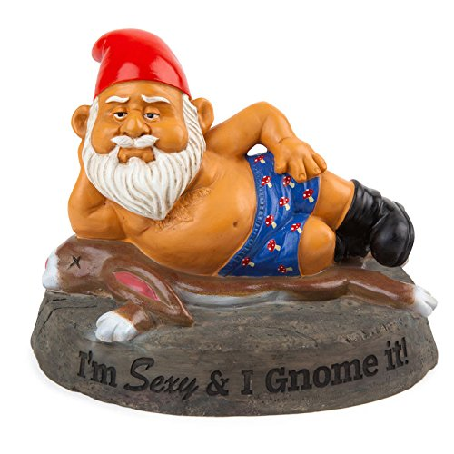 Sexy and I Gnome it! Gartenzwerg - Sexy & I Gnome it! Garten Zwerg Gartenfigur Boxers hört