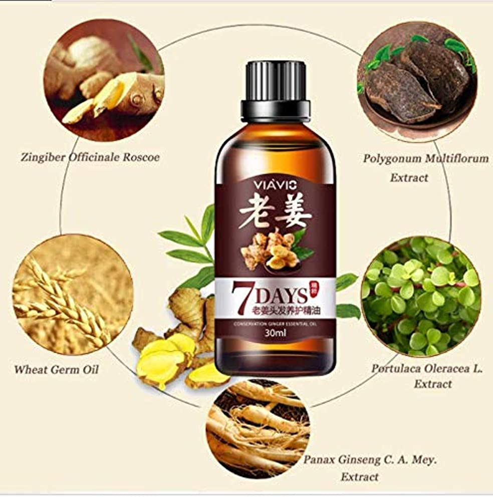亜熱帯言い聞かせる原始的な3pcs x Ginger Hair Growth Essential Oil 30mL, Hair Loss Treatment Ginger Oil for Men & Women