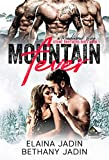 Mountain Fever (Stone Brothers Series Book 1)