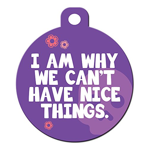 Big Jerk Custom Products Ltd Funny Dog Cat Pet ID Tag - I Am Why We Cant Have Nice Things - Personalize Col.