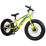 Huoduoduo - Bicicleta de montaña, 20 pulgadas, freno de doble disco de 7 velocidades, acero de carbono alto, todoterreno, adecuado para viajes alpinismo