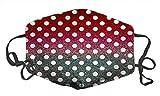 Décoration Visage Hield Co Fortable Coton Adujutable Anti Dut 3 couches Protection (Bille Dot - B)