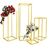 Casnuova Supporto per Vaso Colonna 5 Pezzi 4 Misure Supporto per Fiori in Metallo Centrotavola Matrimonio Portavaso per Matrimonio Colore Oro