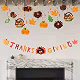 Designed for Thanksgiving - Both swirl pendants and hanging banner contain various Thanksgiving elements, including maple leaves, oak leaves, orange pumpkins, lovely turkeys and small baskets full of ripe fruits and vegetables. There are phrases or w...