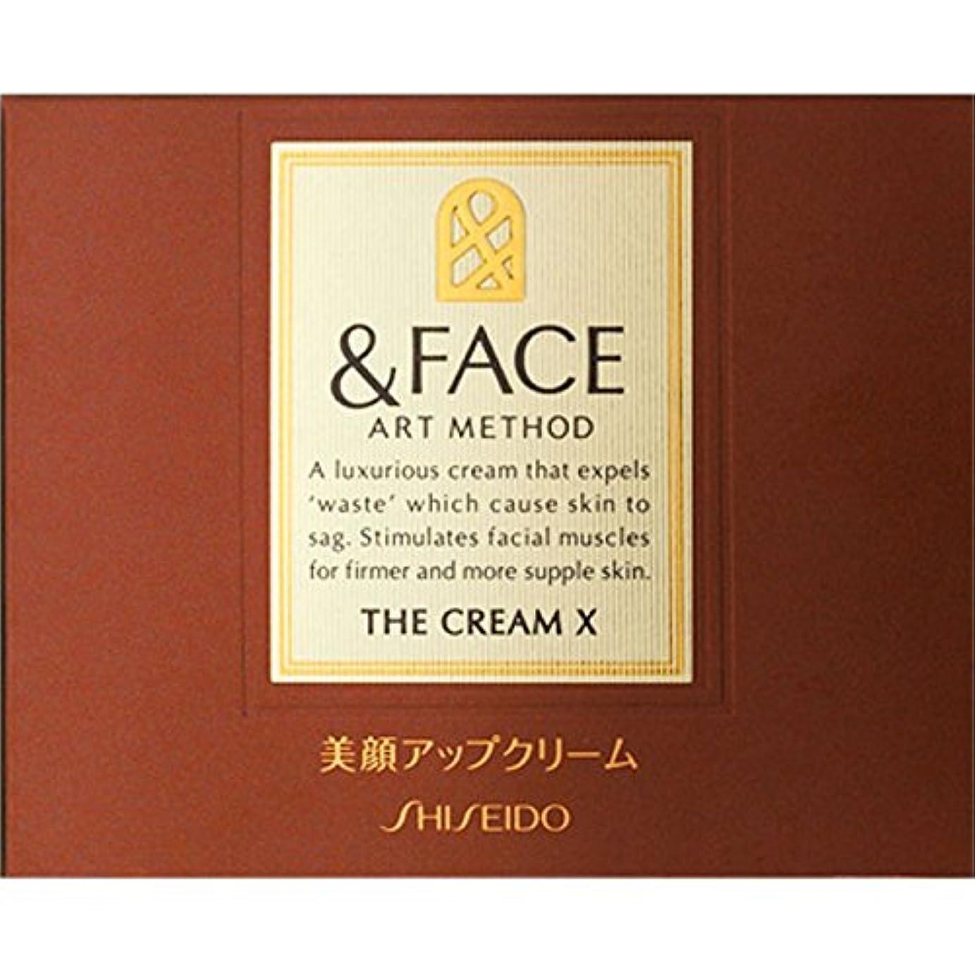 ブラウン困惑したぜいたく資生堂インターナショナル &FACEアートメソッドザクリームX - (医薬部外品)