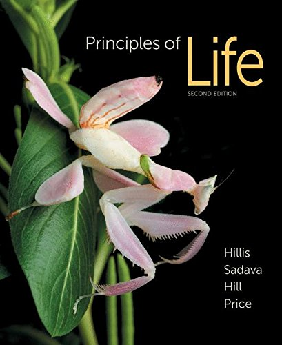 Compare Textbook Prices for Principles of Life Second Edition ISBN 9781464109478 by Hillis, David M.,Sadava, David E.,Hill, Richard W.,Price, Mary V.