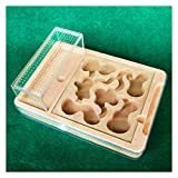 WWL Nest Ant Granja Castillo Hormiga Casa Set PP Shell Yeso Núcleo Nido de Cría Jaula de Juguete para Niños para hormigas vivas