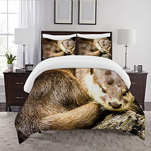 LENYOVO Duvet Cover Set-Bedding,Otters,Quilt Cover Bedlinen-Microfibre 200x200cm with 2 Pillowcase 50x80cm