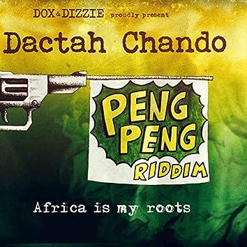 Africa Is My Roots (Peng Peng Riddim)