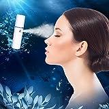 Bromose l'humidité vapeur pulvérisateur portatif pulvérisateur de nano - visage - mini - cool brume brume faciale visage frais pulvérisateur usb