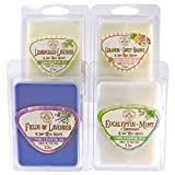 Way Out West Candles Scented Wax Melts for Wax Warmers - Highly Fragrant Air Freshener - 4 Pack Assorted Set of 6 Melt Cubes - Made in USA (4, Stress Relief & Happy Assortment)