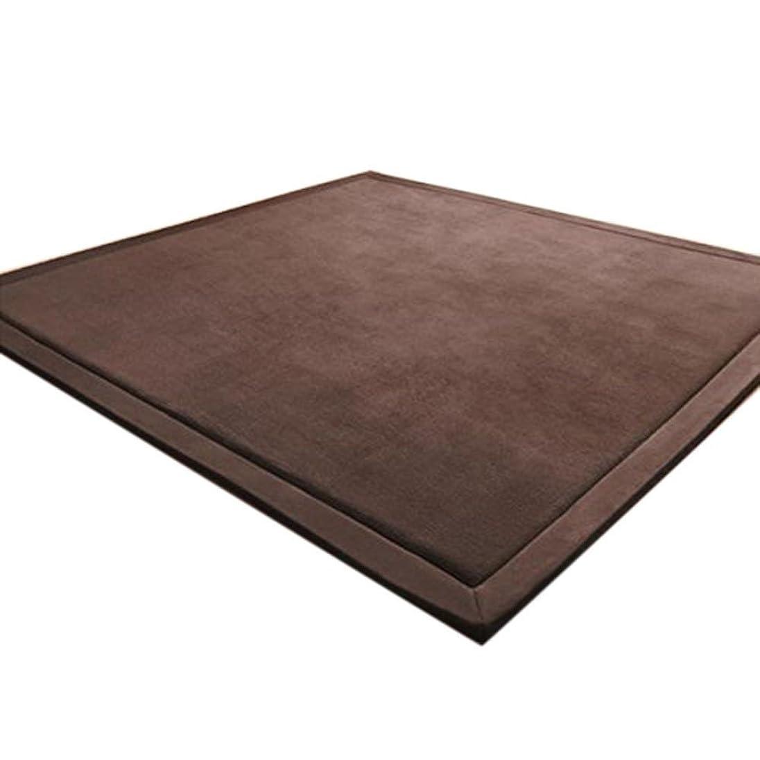 現金ユーザー単調なChinaface 床暖房対応フランネル厚子どもたちが地域の寝室会議室の研究に座ってマットをクロールして発泡ラグカーペット防音ふわふわラグスリップが適用される(180 * 200センチメートル、ブラウン) 180 200センチメートル ブラウン