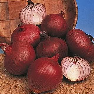white creole onion