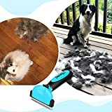 Zoom IMG-1 docatgo spazzola per cani pettine