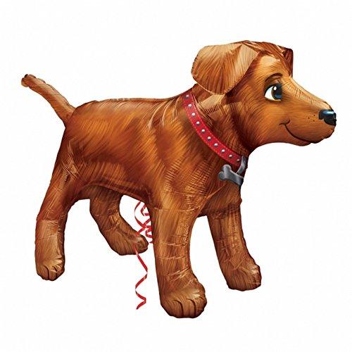 amscan 312340136x 24Golden Dog, Ultra Form Folie Ballons
