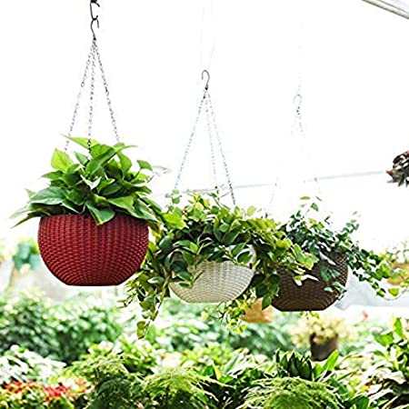 Tex Homz Plastic Hanging Pots Planter, Multicolour, Pot Diameter 8.5 Inch, Pot Height 4.8 Inch, Pot Thickness 3 mm, Chain Length 13 inch - 3 Pieces