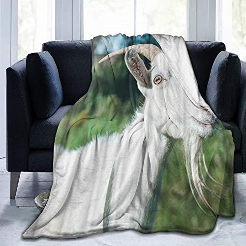 KOSALAER Bedding Manta,Cabra Real Lovely Pet Un Color Gotee Green Grass Beige Ojos,Mantas cálidas de Sala de Estar/Dormitorio Ultra Suaves para Todas Las Estaciones