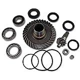 Rear Differential Ring&Pinion Gear +Bearing kit fits HONDA TRX300FW 300Fourtrax ATV 88-00