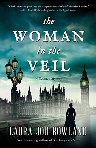 Image of The Woman in the Veil: A Victorian Mystery