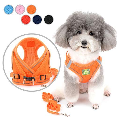 Zunea - Arnés para perro pequeño y sin tirar, arnés ajustable de malla suave reflectante para mascotas y gatos, a prueba de escape para caminar, colores brillantes para perros y niñas