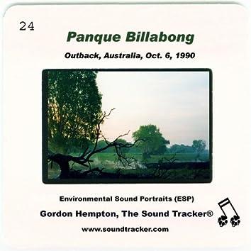 Panque Billabong