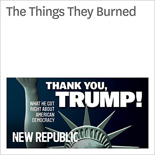 The Things They Burned audiobook cover art