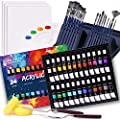Acrylic Paint Set, 49 Piece Professional Painting Supplies Set, Includes 24 Acrylic Paints, 16 Painting Brushes with Case,Paint Knife,Art Sponge and Canvas,Palette, for Artists, Students and Kids