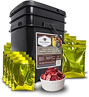Wise Company, Emergency Food Supply, Freeze-Dried Fruit and Snack Bucket, 120 Servings