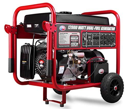 All Power America APGG12000GLC 12000 Watt Dual Fuel Portable Generator