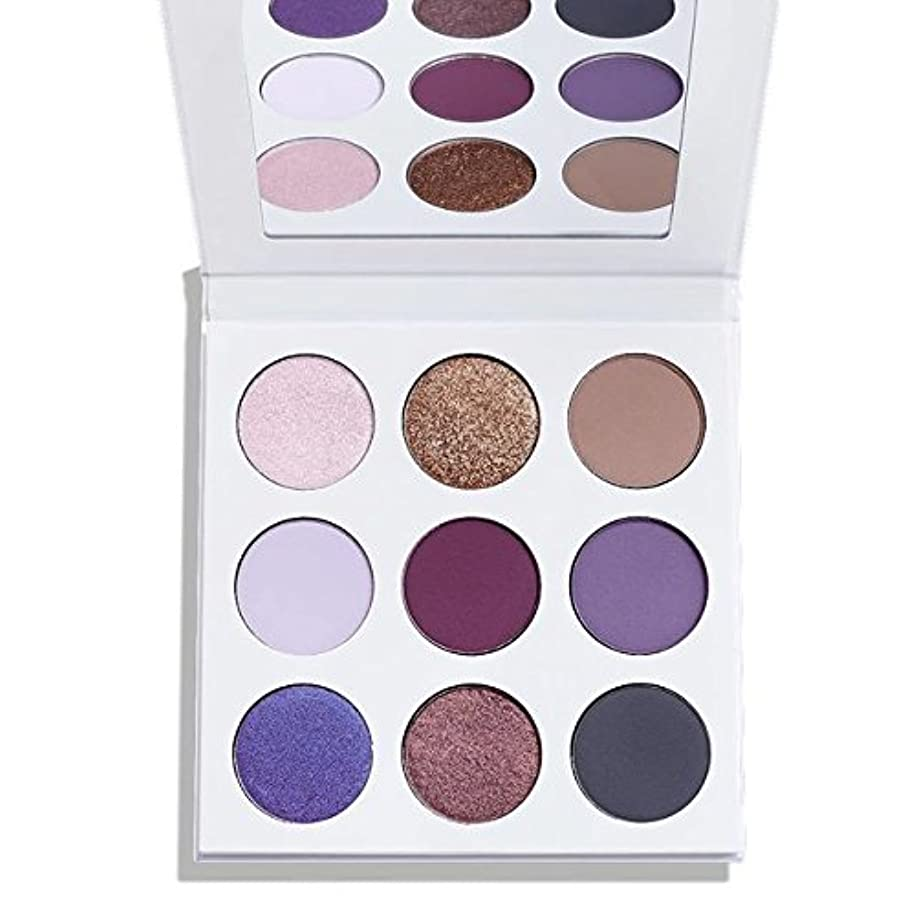 プレートインシュレータ誤ってKylie Fall Collection The Purple Palette