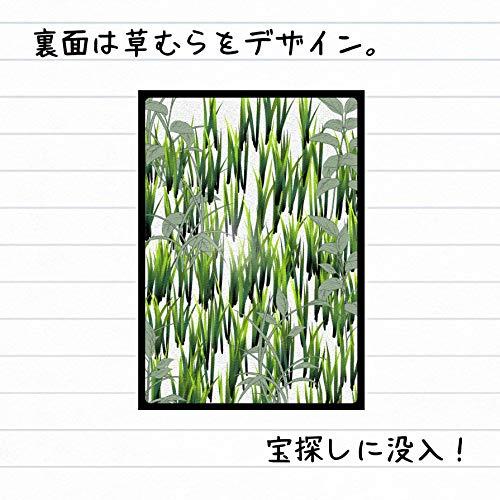 サマータイムメモリー〜夏の日の神経衰弱〜