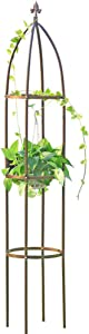 Obelisk Garden Trellis 6.3 Feet Tall Sturdy Plant Support for Climbing Vines and Flowers Stands (4.9 lbs, Dark Bronze)