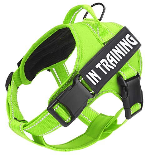 No Pull Dog Harness with Reflective Straps Adjustable Service Dogs Vest with Nylon Handle Easy Control in Training Pet Halters with Hook Oxford Fabric for Small Medium Large Dogs