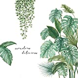 AILANDA Pegatinas de Pared Planta Verde Etiqueta De La Pared Vinilos Decorativos de Pared Adhesivo Decorativo para Dormitorio Sala de Estar Habitación(45cm x 30cm)