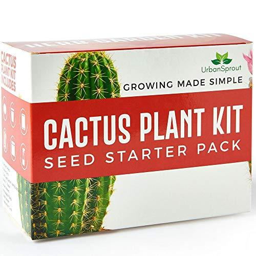 kaktus Samen Set – DIY wachsen Ihre Pflanzen-Kaktus im geschlossen – Ein ungewöhnliches Geschenk für die Gartenarbeit – Körner, Anzuchttöpfe, Erde für das Cactus