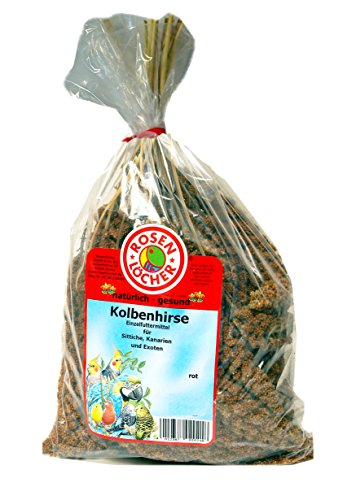 Rosenlöcher Kolbenhirse rot 1kg