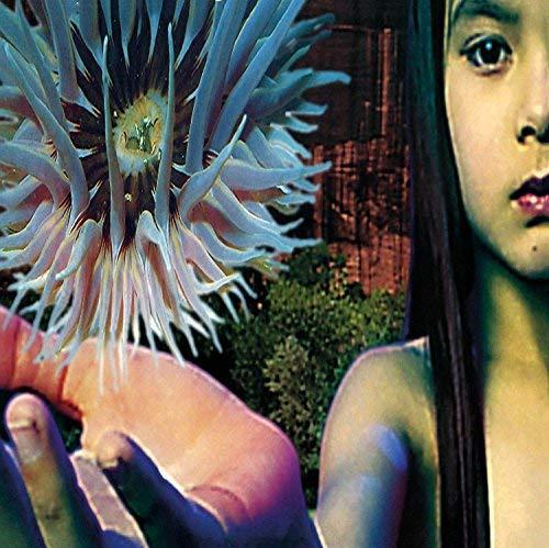 Lifeforms (2LP) [Vinyl LP]