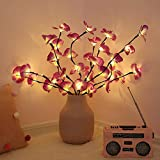 Luces de rama de orquídea de simulación LED de 73 cm 20 bombillas Relleno de florero de Navidad Luz floral Vacaciones de fiesta de jardín Luces de decoración de escritorio
